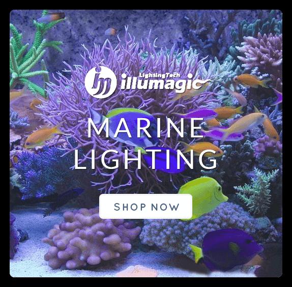 Aquarium Fish Tank LED Lighting Australia | Aquarium Equipment Online